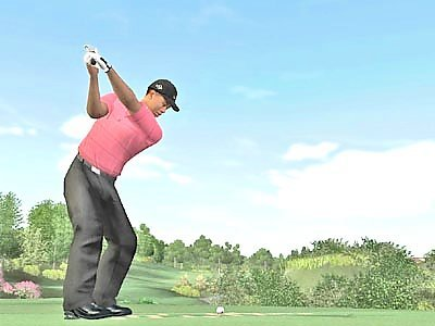 Tiger Woods PGA Tour 07 for Xbox image