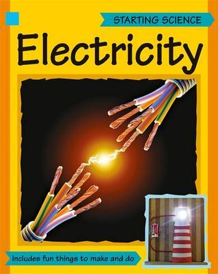Amazing Science: Electricity by Sally Hewitt image