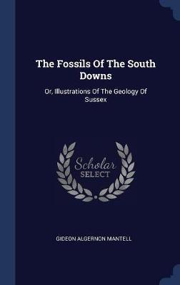 The Fossils of the South Downs by Gideon Algernon Mantell image
