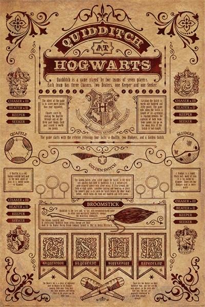 Harry Potter Quidditch At Hogwarts Maxi Poster (620)
