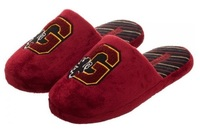Harry Potter - Gryffindor Slide Slippers (Small)
