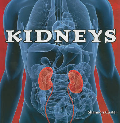 Kidneys by Shannon Caster