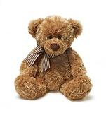Ville Teddy Bear