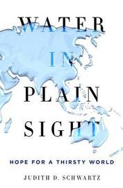 Water in Plain Sight by Judith D Schwartz
