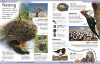 First Animal Encyclopedia by DK image