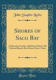 Shores of Saco Bay by John Staples Locke image