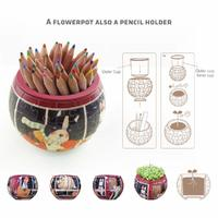 Pintoo: 80-Piece Puzzle Flower Pot - Modern Architectures