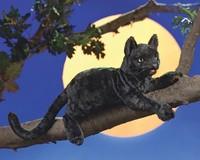 Folkmanis: Hand Puppet - Black Cat