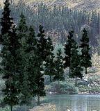 Woodland Scenics Pine Trees (24 pack)