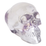 Day Of The Dead Skull Ornament (Translucent, Large)