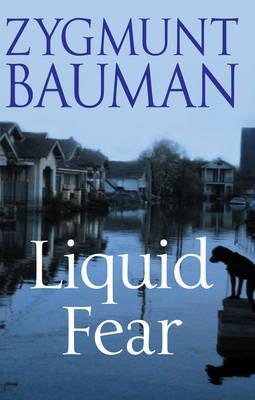 Liquid Fear by Zygmunt Bauman