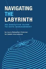 Navigating the Labyrinth by Laura Sebastian-Coleman