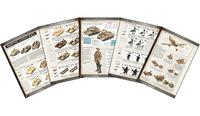 Flames of War: Desert Rats - Army Rulebook image