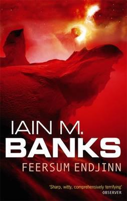 Feersum Endjinn by Iain M Banks