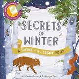 Secrets of Winter by Carron Brown