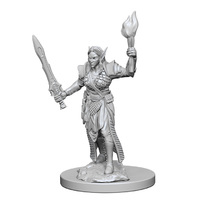 Pathfinder Deep Cuts: Unpainted Miniatures - Elf Female Fighter