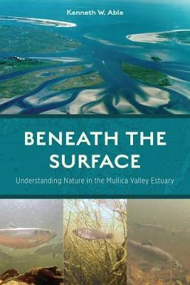 Beneath the Surface by Kenneth W. Able