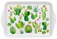 Succulent Garden: Melamine Scatter Tray