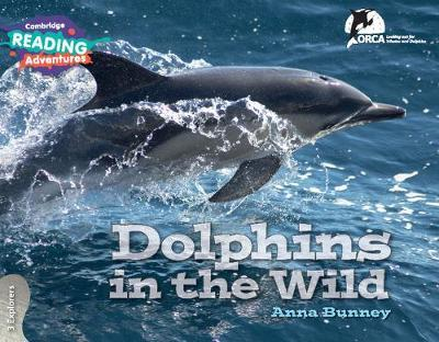 Dolphins in the Wild 3 Explorers by Anna Bunney