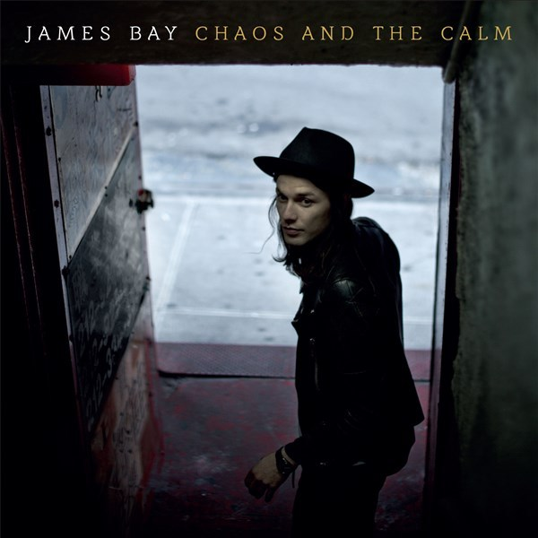 Chaos And The Calm (LP) by James Bay image