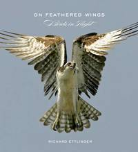 On Feathered Wings: Birds in Flight by Richard Ettlinger image