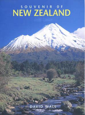 Souvenir of New Zealand by David Wall image
