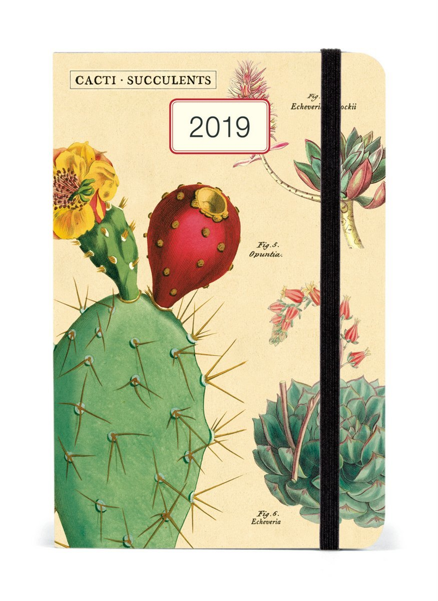 Succulents 2019 A6 Weekly Diary image