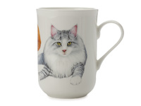 Maxwell & Williams - Cashmere Pets Mug - Norwegian Forest Cat (300ml)