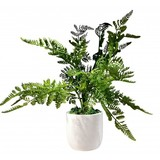 Potted Faux Fern (38cm)