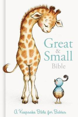 CSB Great and Small Bible (Boxed) by Csb Bibles by Holman