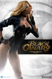 "DC Comics: Black Canary - 21"" Premium Format Figure"