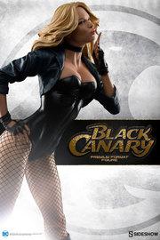 "DC Comics: Black Canary - 21"" Premium Format Figure"