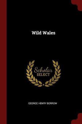 Wild Wales by George Henry Borrow