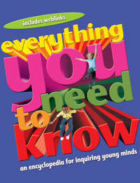 Everything You Need to Know by Deborah Chancellor