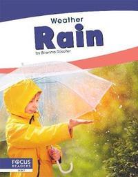 Rain by Brienna Rossiter