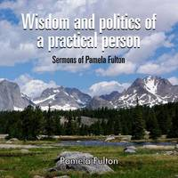 Wisdom and Politics of a Practical Person by Anna Messner