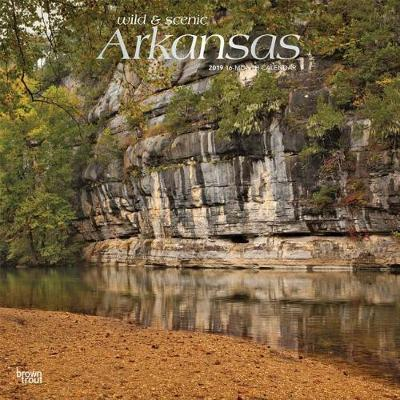 Arkansas Wild & Scenic 2019 Square Foil by Inc Browntrout Publishers