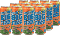 Fresh Up Big Fizz Feijoa Burst 500ml x12