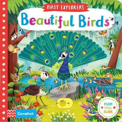 Beautiful Birds by Campbell Books image