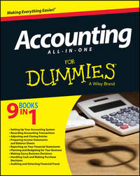 Accounting All-in-One For Dummies by Kenneth Boyd image