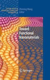 Toward Functional Nanomaterials image