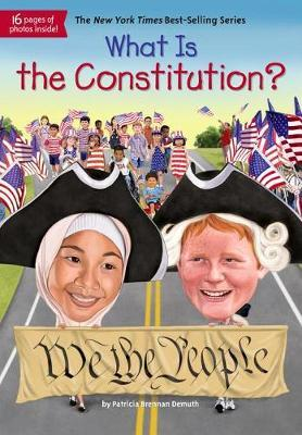 What Is the Constitution? by Patricia Brennan Demuth image