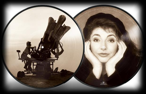 Cloudbusting (Picture Disc) by Kate Bush