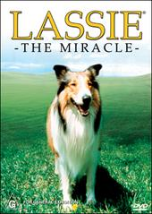 Lassie - The Miracle on DVD