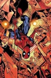 Spider-man: Light In The Darkness by Paul Jenkins