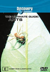 Ultimate Guide - Ants on DVD