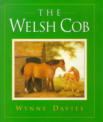 The Welsh Cob by Wynne Davies image
