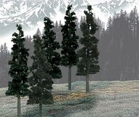 Woodland Scenics Pine Trees (12 pack)