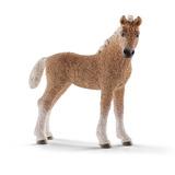 Schleich: Bashkir Curly Foal