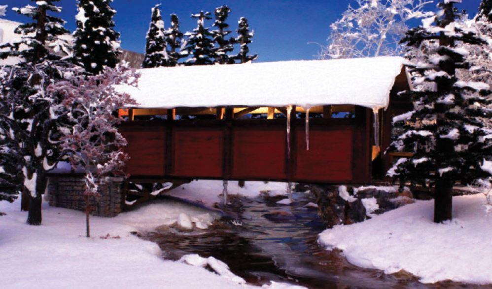 Woodland Scenics Snow image
